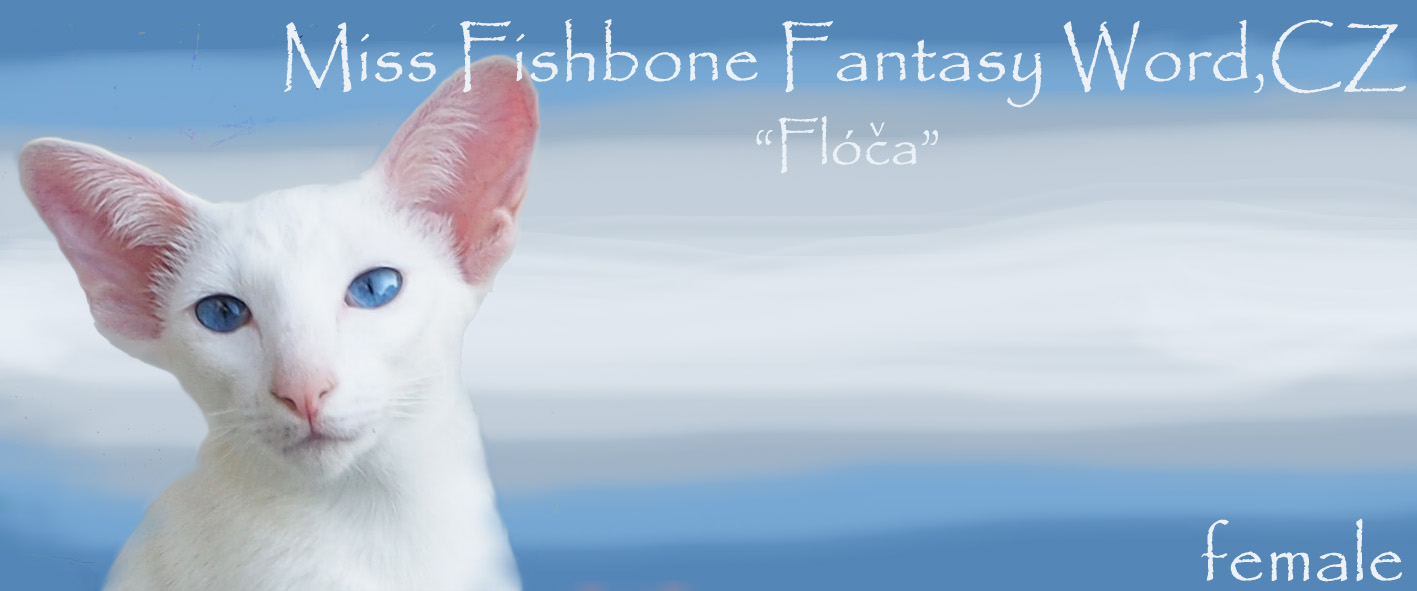 Mis Fishbone Fantasy Word